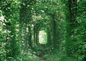 このトンネルはウクライナにあります。 でもウクライナといってもピンとこ... Lilong Ca